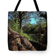 Mystic Pond Tote Bag