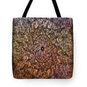 Mystic Spring Tote Bag