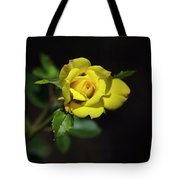 Mystic Yellow Rose Tote Bag