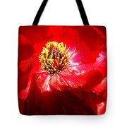 Mystical ... Tote Bag