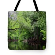 Mystical Withlacoochee River Tote Bag