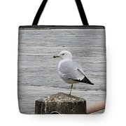 N Y C Water Gull Tote Bag
