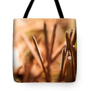 Nails On Dragon Tote Bag
