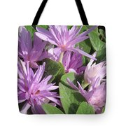 Naked Lady Tote Bag