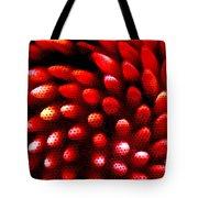 Naked Porcupine Tote Bag