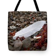 Nameless Feather 1 Tote Bag