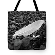 Nameless Feather 2 Tote Bag
