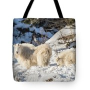 Nanny And Her Kid Tote Bag