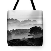 Nantucket Middle Moors In Fog Tote Bag
