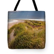 Napatree Point Preserve Tote Bag by Susan Cole Kelly