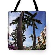 Naples Florida V Tote Bag