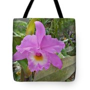 Naples Orchid 3 Tote Bag