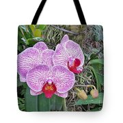 Naples Orchid 4 Tote Bag