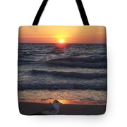 Naples Sunset 0042 Tote Bag