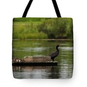 Naptime Lookout Tote Bag