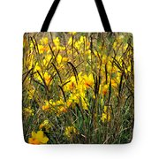Narcissus And Grasses Tote Bag