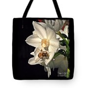 Narcissus And The Bee 2 Tote Bag by Daniele Smith