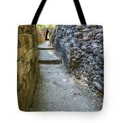 Narrow Mayan Road Tote Bag