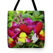 Nascent Blossoms  Tote Bag