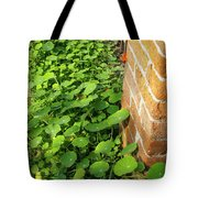 Nasturtium Leaves Tote Bag