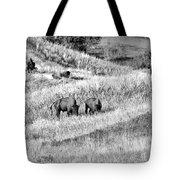 National Bison Range Wildlife Refuge Mt Usa Tote Bag
