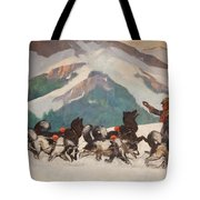 National Park Service - North Country Tote Bag