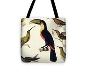 Native Birds, Including The Toucan From The Amazon, Brazil Tote Bag