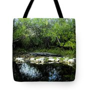 Native Floridian Tote Bag