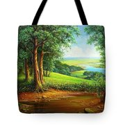 Native Places. Tote Bag