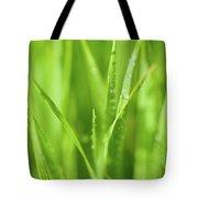 Native Prairie Grasses Tote Bag by Steve Gadomski