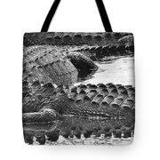 Gator 2 18 Tote Bag