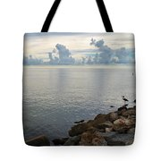 Scapes 7 17 Tote Bag