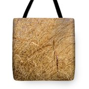 Natural Abstracts - Elaborate Shapes And Patterns In The Golden Grass Tote Bag