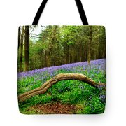 Natural Arch And Bluebells Tote Bag