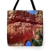 Natural Arch Tote Bag