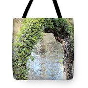 Natural Archway Over Hillsborough River Tote Bag
