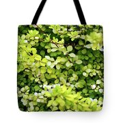 Natural Background With Small Yellow Green Leaves. Tote Bag