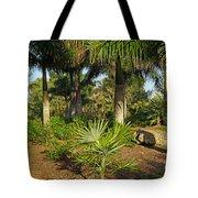 Natural Beauty Of Florida Tote Bag