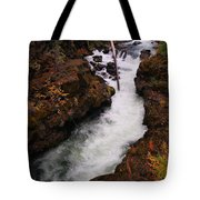 Natural Bridge Gorge Tote Bag
