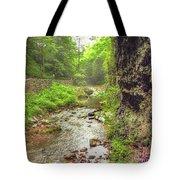 Natural Bridge Valley Tote Bag