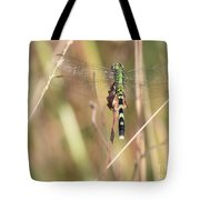 Natural Canvas With Dragonfly Tote Bag