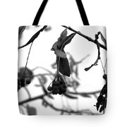 Natural Composition II Tote Bag