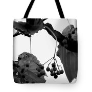 Natural Composition Tote Bag