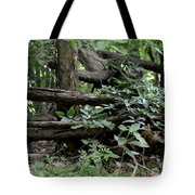 Natural Wood Fence Tote Bag