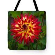 Natural Fireworks Tote Bag