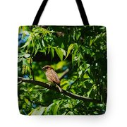 Natural Insect Repellant Tote Bag