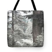 Natural Magnetism. Shabby Chic Collection Tote Bag