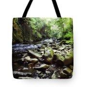 Natural Place Tote Bag