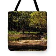 Natural Seating By River Tote Bag