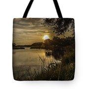 Natural Spotlight Tote Bag